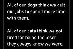 Dogs-n-Cats